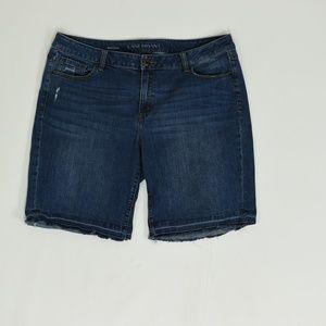 Lane Bryant Plus 20 Blue   Short Cotton Solid